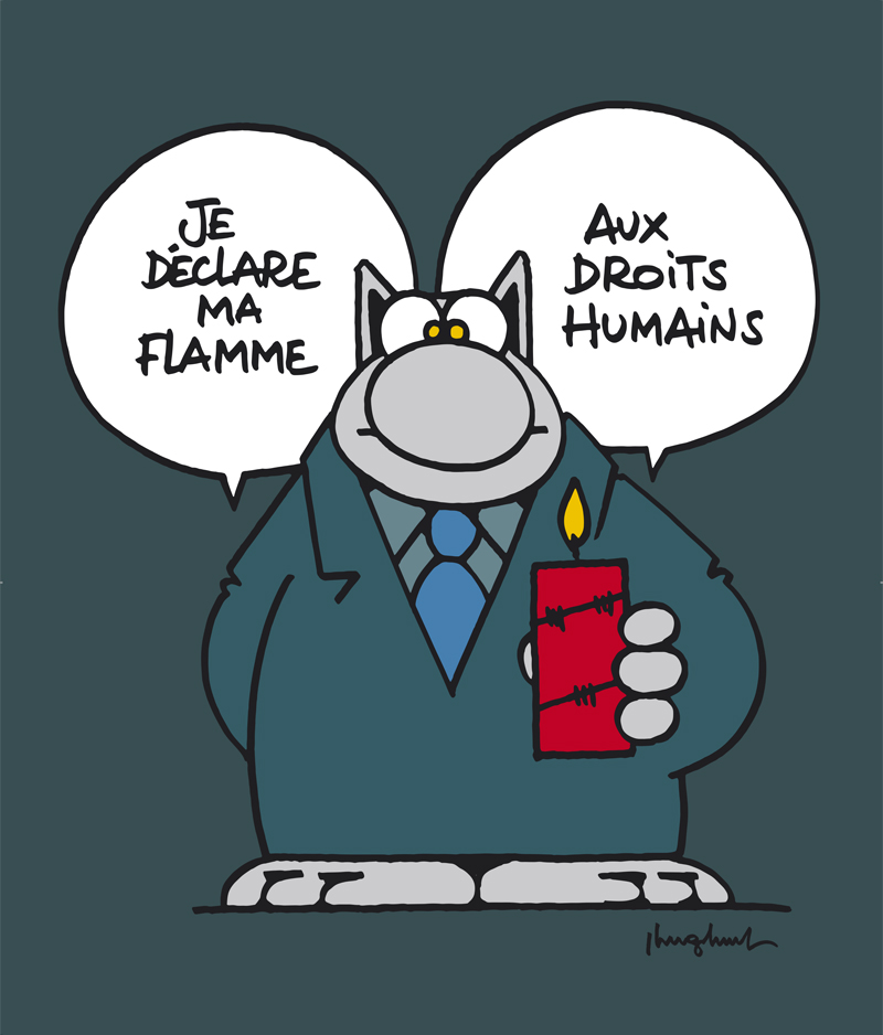 le chat amnesty